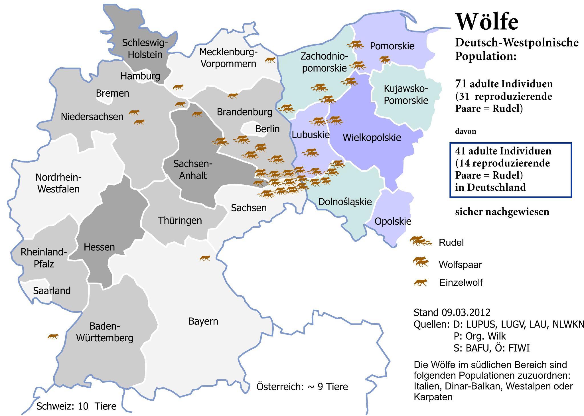 www.wolfsspur.info